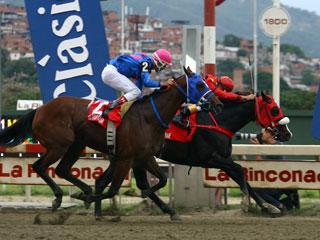 King Seraf supera a El Gran Cesar